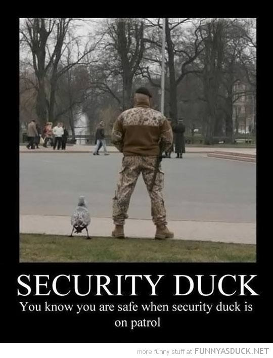 security_duck